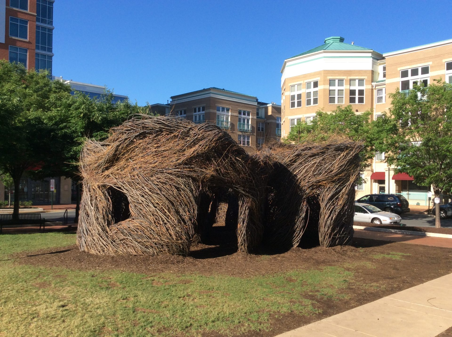 A Bird in the Hand — Patrick Dougherty