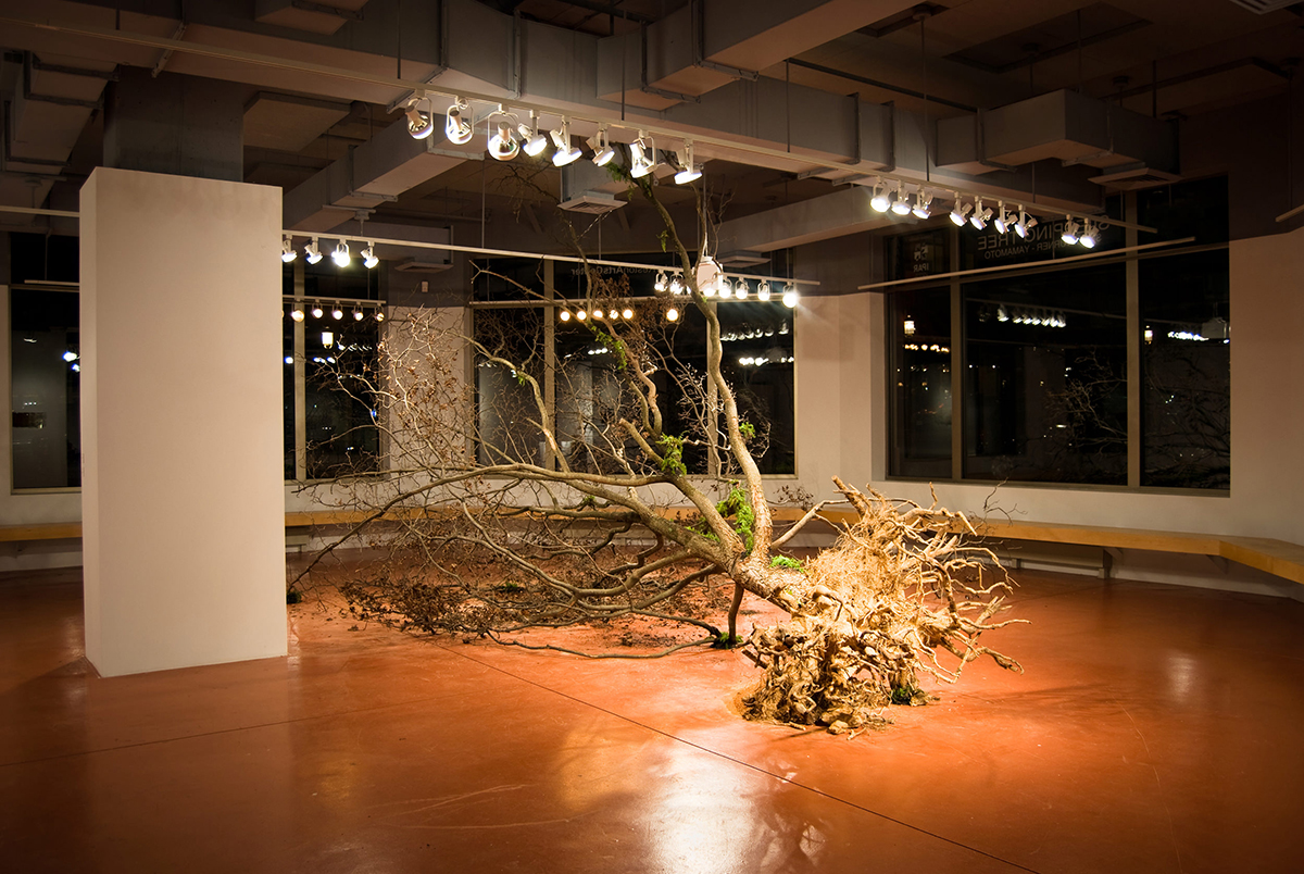 shinji_turner_yamamoto__global_tree_project__sleeping_tree